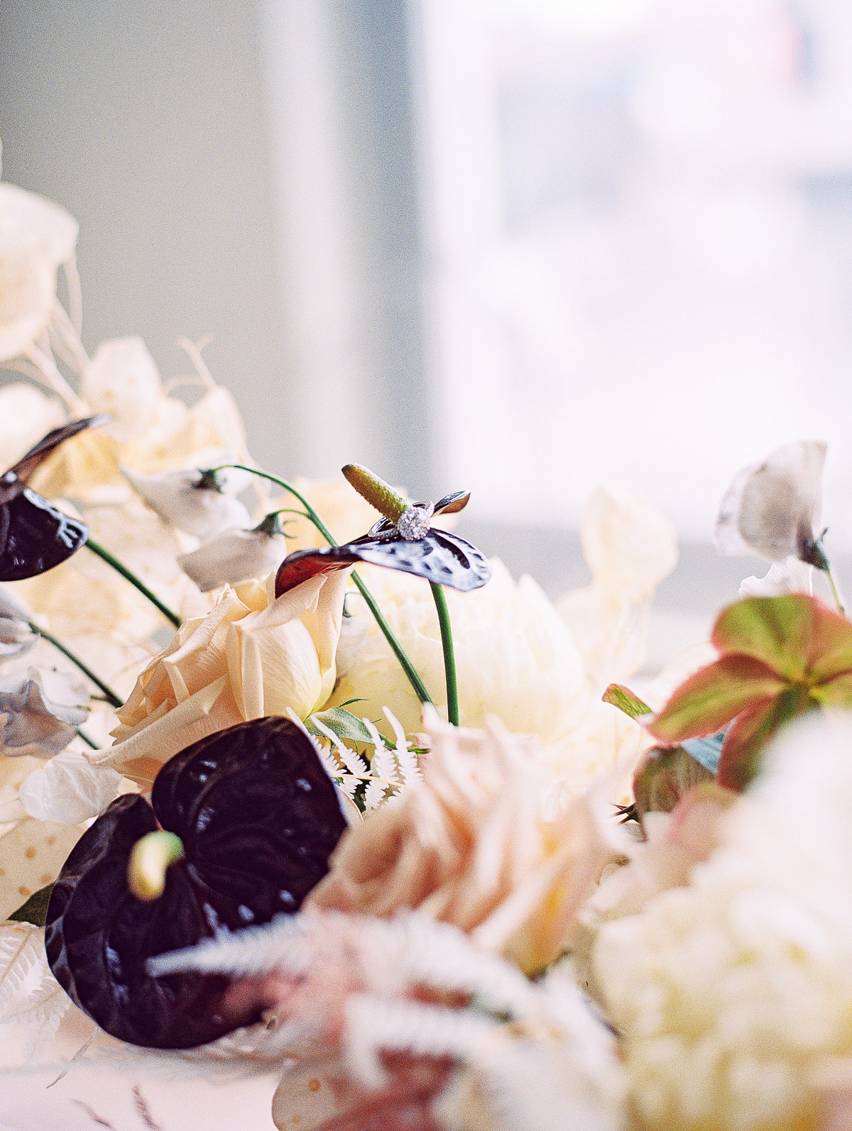 Brides ring sits on the petals of a dark Anthurium plant amidst a floral centerpiece